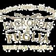 L'Acropoli di Puglia